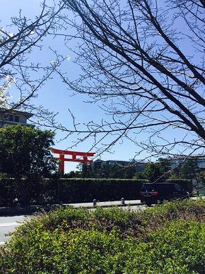 s-京都動物園